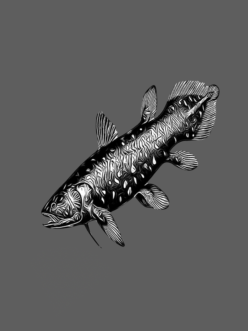 Coelacanth Raja Ampat